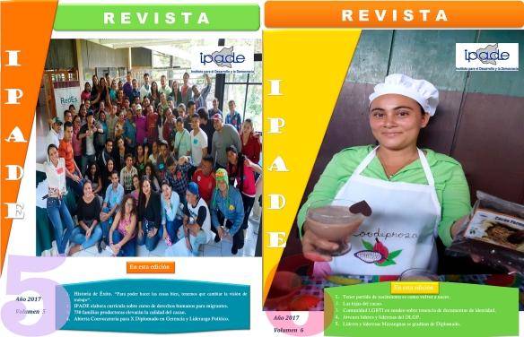 revistas-ipade-5-y-6